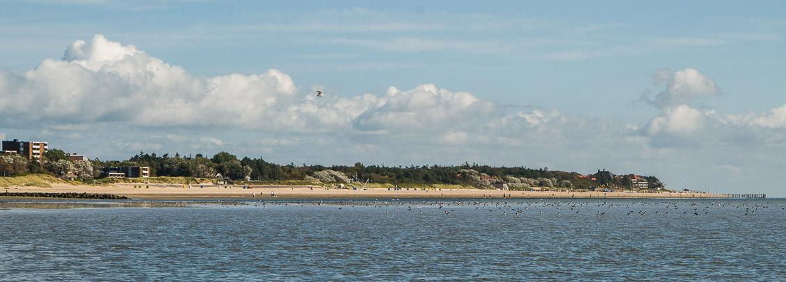 Föhr Watt Strand