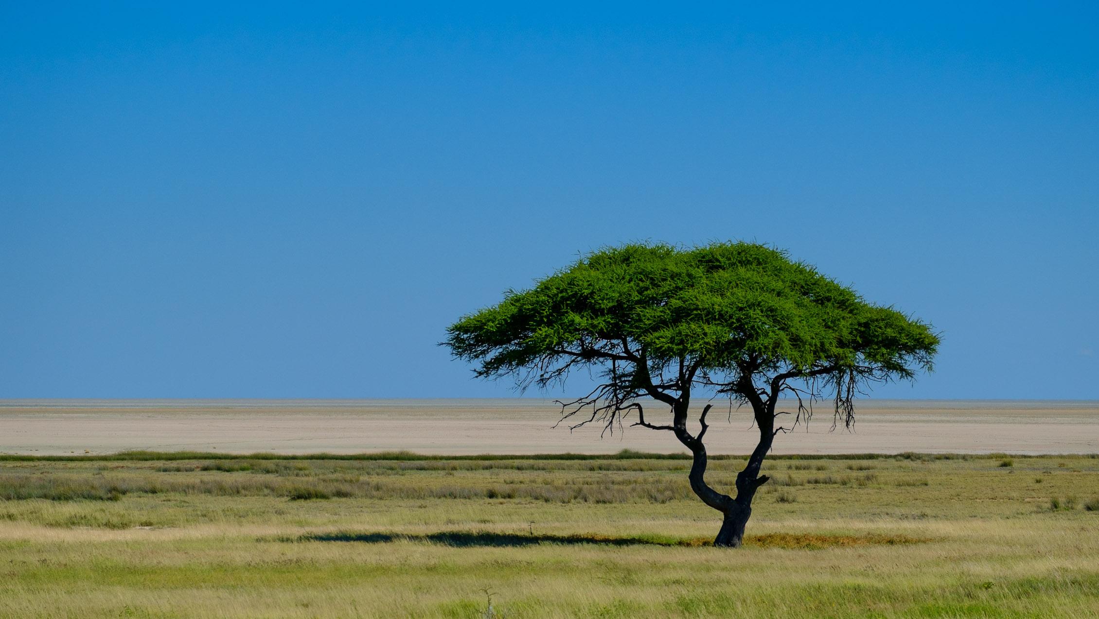 Namibia: Die Landschaft, die Farben, die Weite… – schönergesehen.de