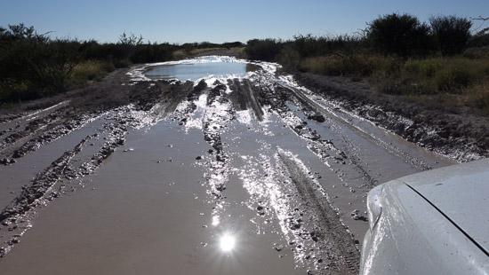 Namibia Rundreise Etosha